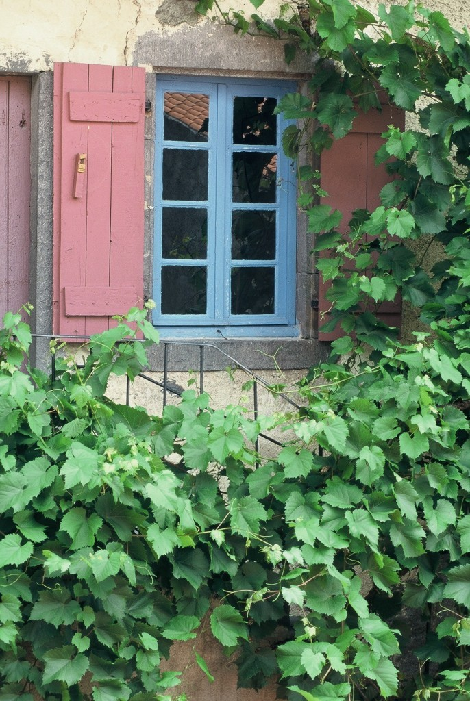 Une maison vigneronne au Gamounet